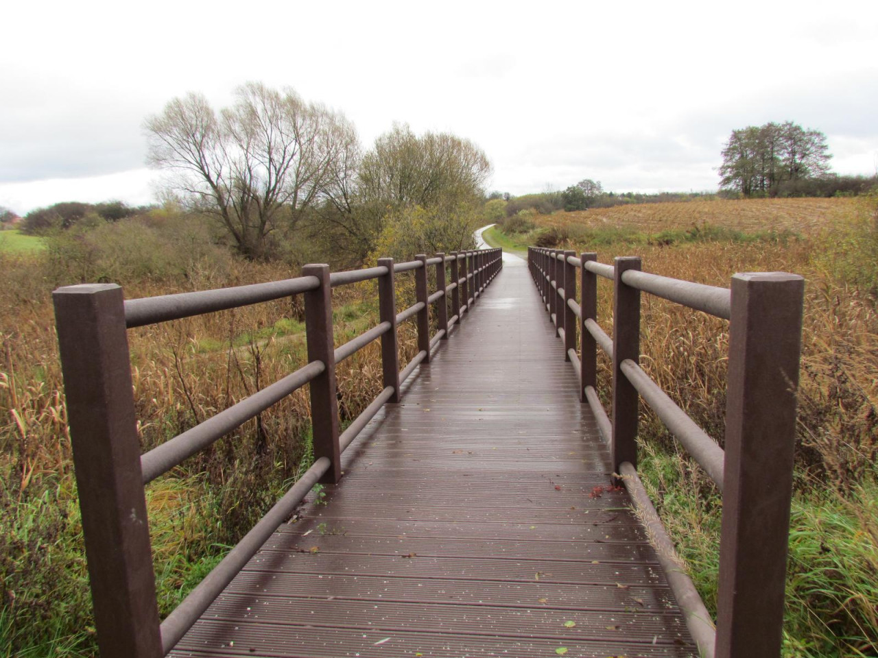 Hahn composite boardwalk